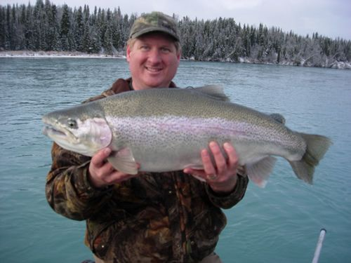 Jim's Biggest Rainbow Trout on the Kenai River Fall 2006