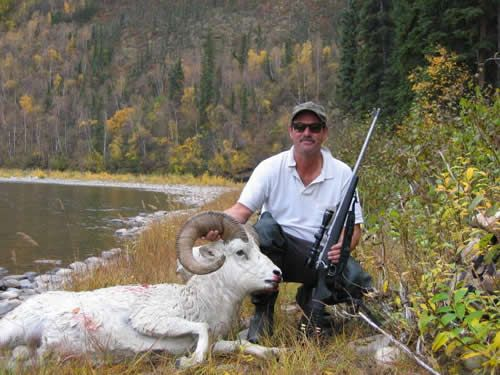 Alaska Dall Sheep taken by Pat